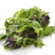 Salad Leaves — Stock Photo #32594459