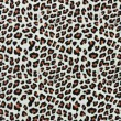 Stock Photo: Leopard Spots Background