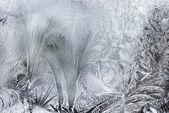Ice Patterns On A Winter Window — Stock Photo