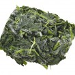 Block Of Frozen Spinach — Stockfoto