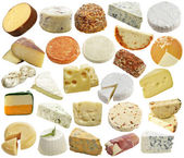 Cheese Collection — Stock Photo