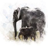 Watercolor Image Of  Elephants — Stockfoto