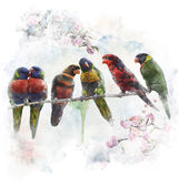 Watercolor Image Of  Colorful Parrots — Foto Stock