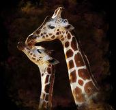 Watercolor Image Of Giraffes — Stock Photo