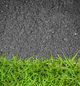 Green grass and asphalt Texture — Stok fotoğraf