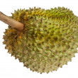 Durian fruits — 图库照片