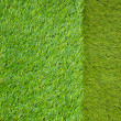 Artificial turf japanese green - Stock Photo