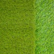 Artificial turf japanese green - Stock fotografie