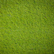 Artificial turf japanese green - Foto de Stock