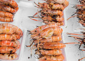 Grilled prawns for sale — Stock Photo