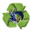 "Recycle logo symbol from the green grass and earth. ""Elements of — Stock Photo #22353179"
