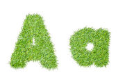Alphabet from the green grass. isolated on white — Stock Photo