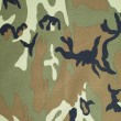 Military texture camouflage background — Stok fotoğraf