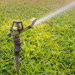 Sprinkler head watering the flowers and grass — Stock Photo #41651911