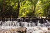 Wald wasserfall — Stockfoto