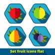 Vector fruit icon set — Stock Vector