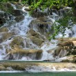 JamaicDunn's River Falls — Stock Photo #12391178