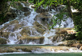 Jamaica Dunn's River Falls — Stock Photo