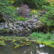 Natural stone pond - Stock Photo