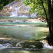 Stock Photo: Dunn's River Falls, Jamaica.