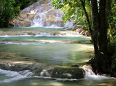 Dunn's River Falls, Jamaica. — Stock Photo