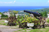 The scenic view over Ocho Rios port town from Shaw Park Botanical Gardens — Stock Photo