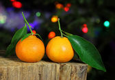 Clementines against christmas tree background — Stock Photo