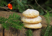 Shortbread cookies for christmas — Stock Photo