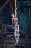 A pirate skeleton hanging from a noose — Stock Photo