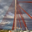 Постер, плакат: The cable stayed bridge Talavera with a dimension of 185 construction metra Height