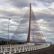 The cable-stayed bridge Talavera, with a dimension of 185 construction metra Height - Stock Photo