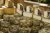 Esposizione di formaggi — Foto Stock