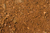 Texture, background and red earth clay — Stock Photo