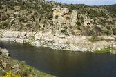 Natural Landscape River — Stock Photo