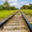 Railway in green landscape — Stock Photo #11843990