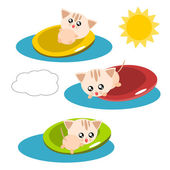 Cartoon cat in the pool illustration — Stock Vector