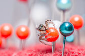 Spider and pins — Fotografia Stock