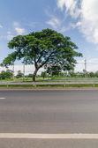 дорога и небо — Стоковое фото