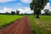 Silniční půdy — Stock fotografie