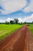 Road soil — Stock Photo