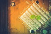Little plant in electronic — Stock Photo