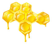 Honeycomb with dripping honey — Stock Vector