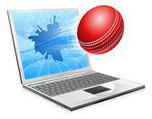 Kriket laptop kırık ekran konsepti — Stok Vektör