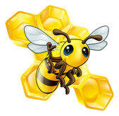 Bee and honeycomb — Stock Vector