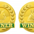 Cat and dog pet winners medals — Stock Vector