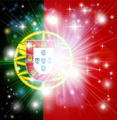 Portuguese flag background — Stock Vector