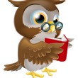Cartoon Owl Reading a Book - Stock Vector