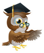 Teacher owl pointing — Stock Vector