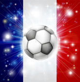 France soccer flag — Stock Vector