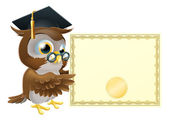 Owl diploma certificate background — Stock Vector